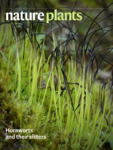 Cover of Nature Plant issue holding this article
